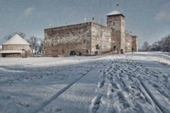Gyula városa (12)